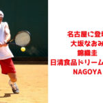 日清ドリームテニス