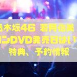 乃木坂46若月佑美