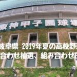 2019年夏 岐阜県高校野球