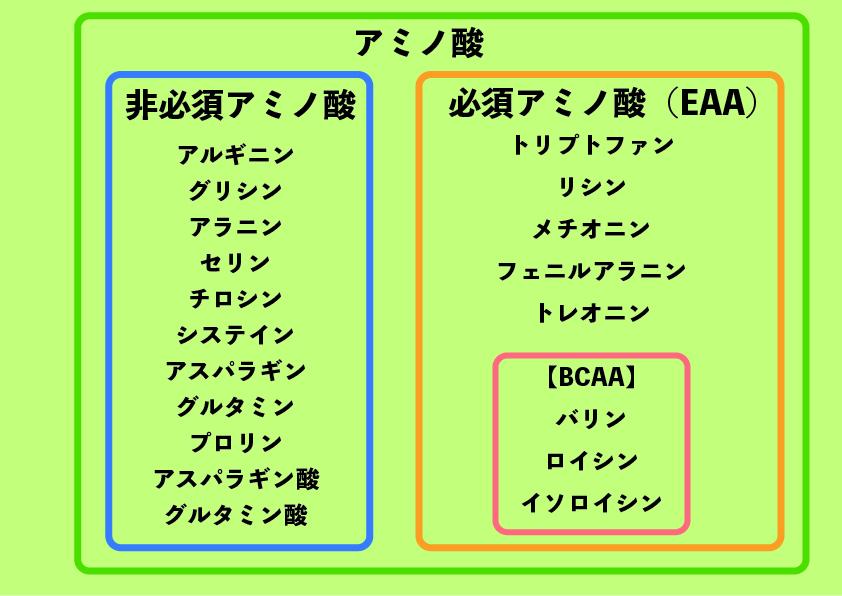 EAAとBCAA